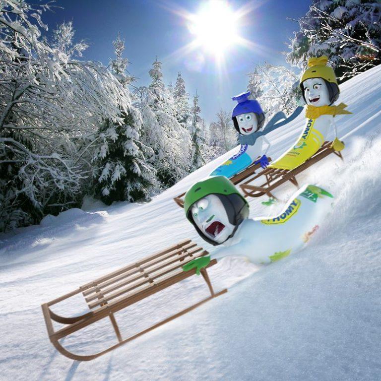 Sport d'hivers